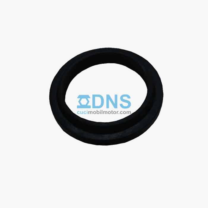 Seal Hidrolik Motor DNS